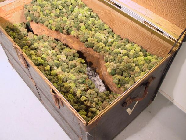 miniatuur-landschappen-koffers-2