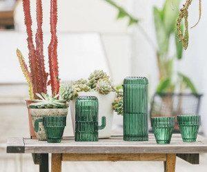 saguaro-glazen