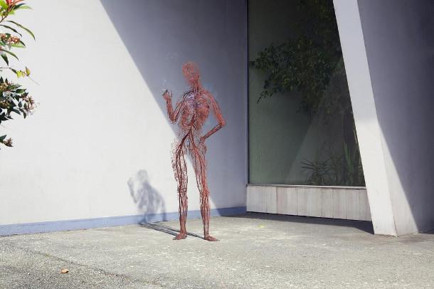 lichamen-bloedvaten-2