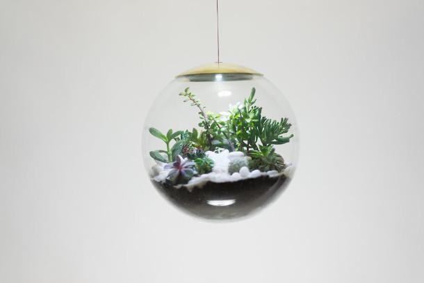 bol-terrarium-LED-2
