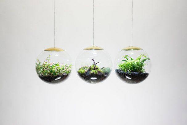 bol-terrarium-LED