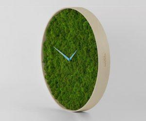 klokken-mos