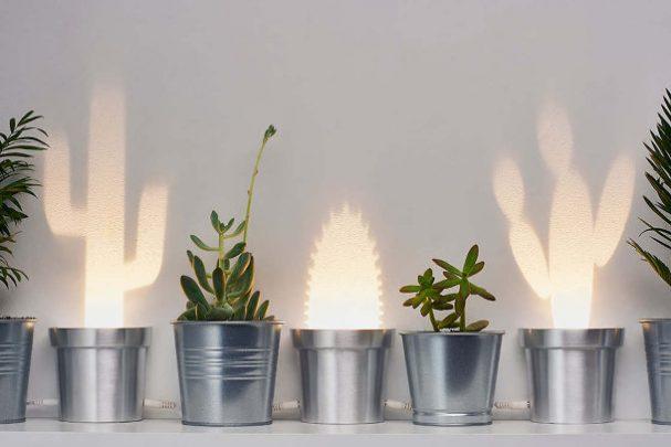 cactus-lampen
