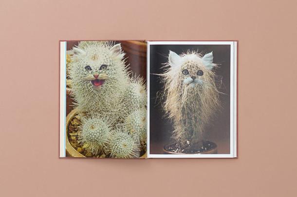 katten-planten-boek