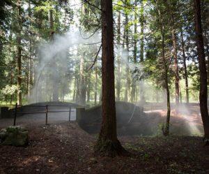 mist-installatie-ring