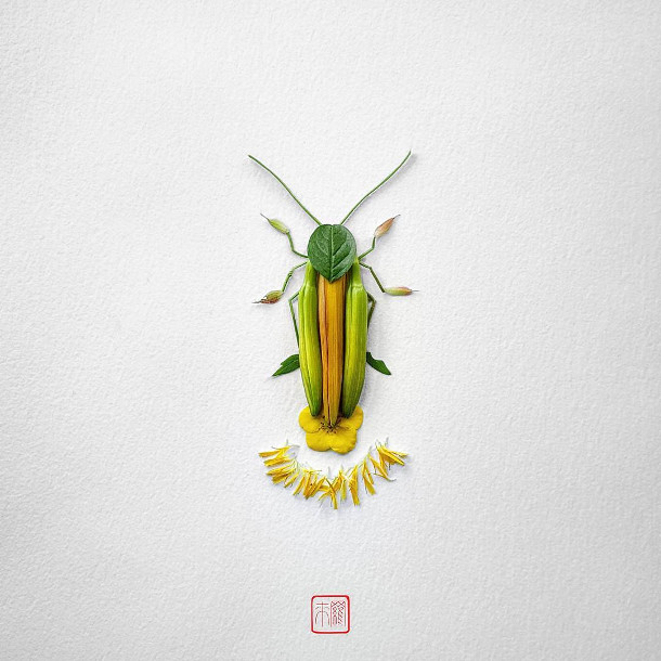 bloemen-insecten-4
