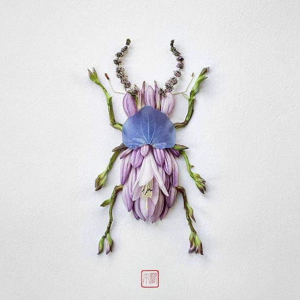 bloemen-insecten-5