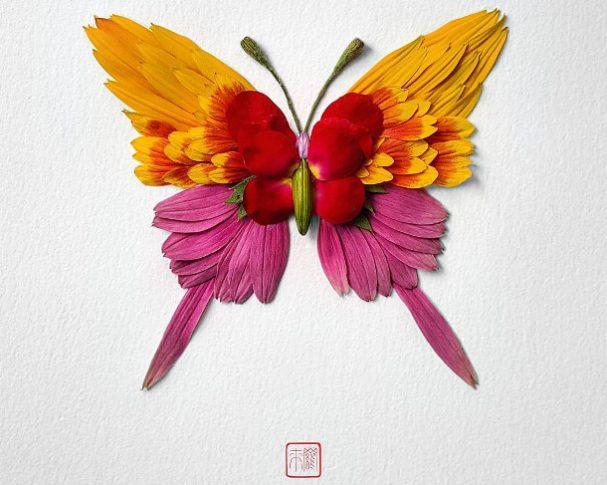 bloemen-insecten