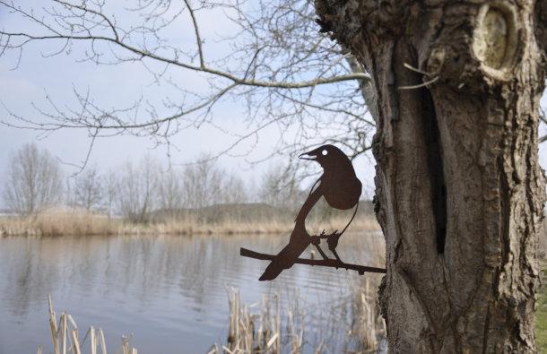 metalbird-tuin-4