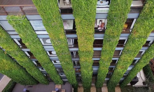 verticale-tuin-bogota-3