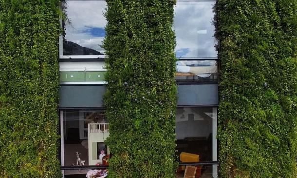 verticale-tuin-bogota-4