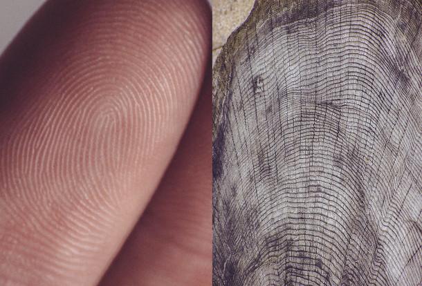 human-vs-nature-4