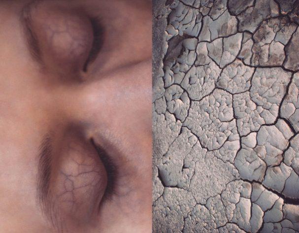 human-vs-nature