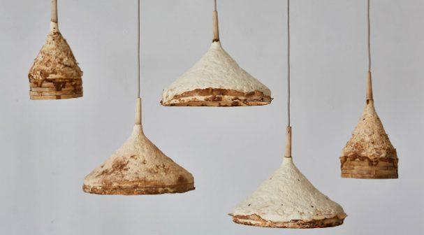 paddenstoelen-interieur