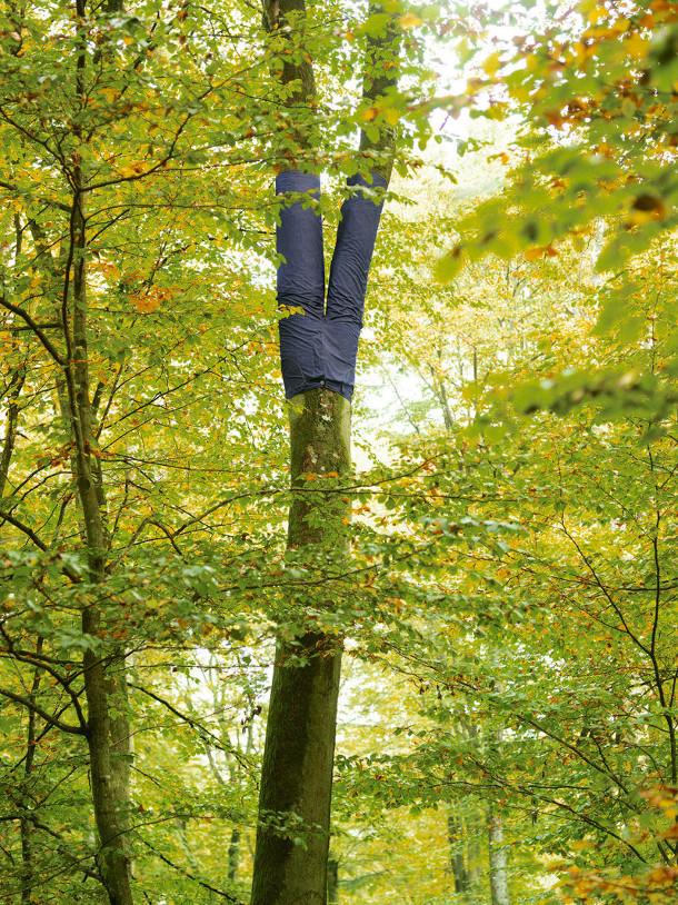bomen-spijkerbroeken-2