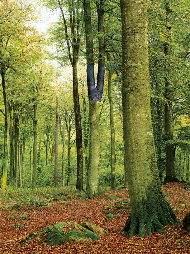 bomen-spijkerbroeken-3