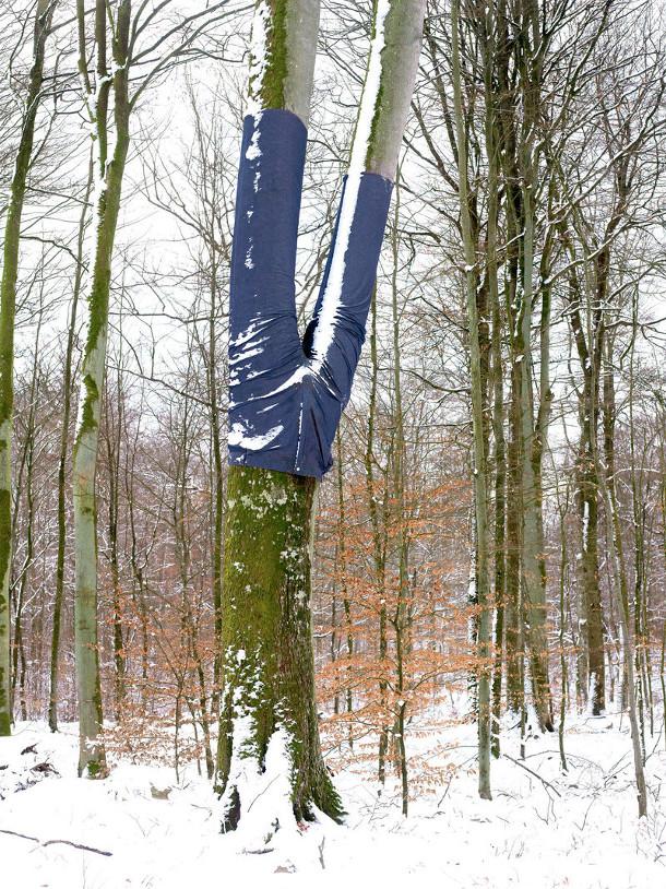 bomen-spijkerbroeken-4