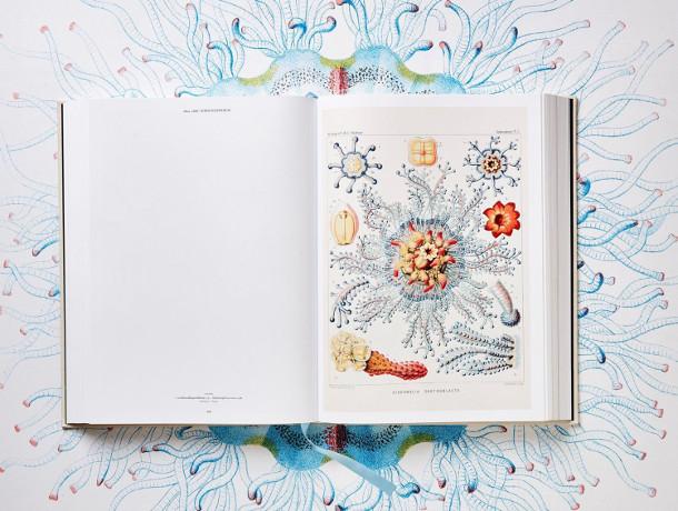 biologische-illustraties-2