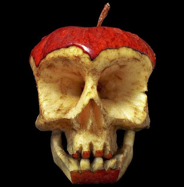 schedels-fruit-groente-2