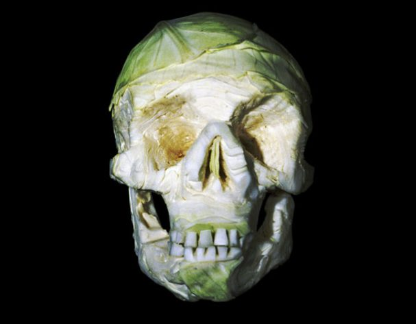 schedels-fruit-groente