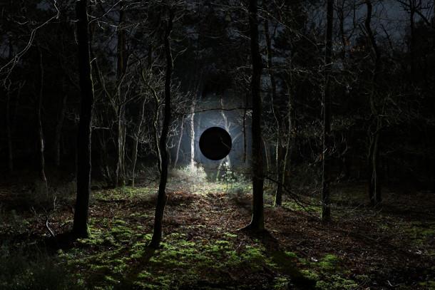 nachtelijk-verlicht-bos-4