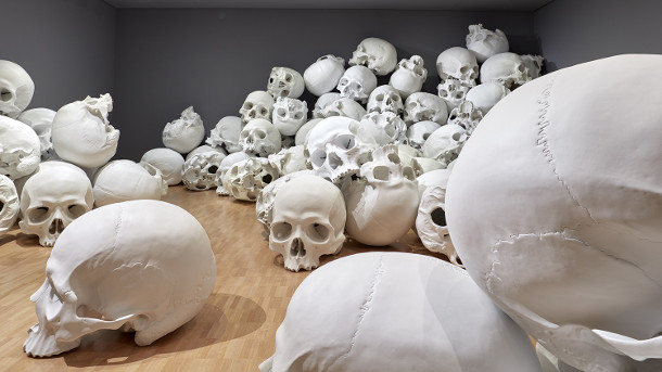 schedels-museum-3