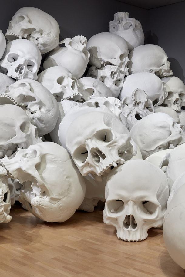 schedels-museum-4