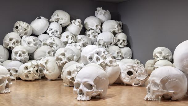 schedels-museum-5