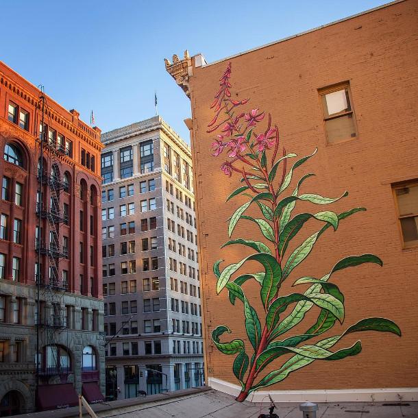 planten-muurschilderingen-4