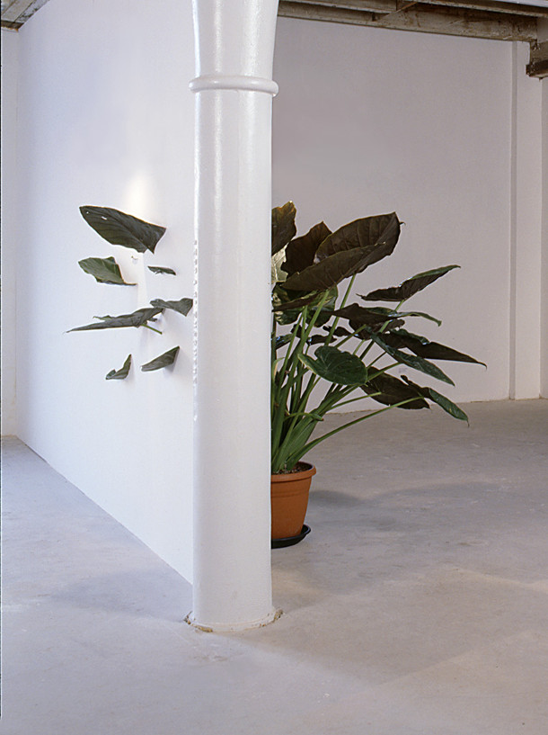 plant-installatie-4