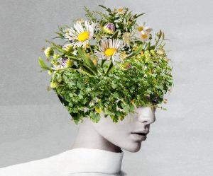 collage-portretten-vrouwen