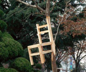 stoel-boom