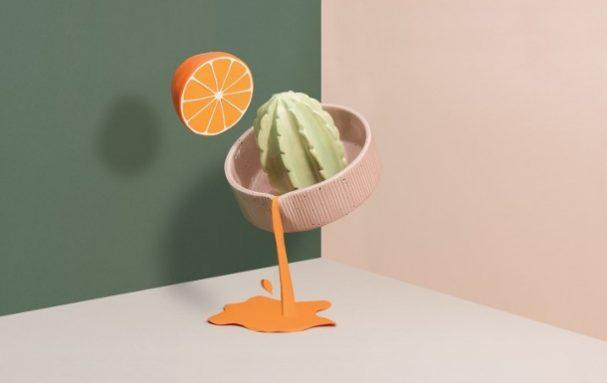 cactus-citruspers-doiy