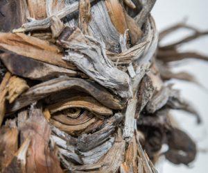 houten-portretten