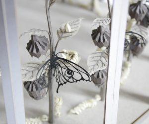 papier-zootroop-vlinder