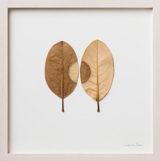 haken-gevonden-bladeren-6