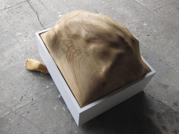 verborgen-houten-beelden-2