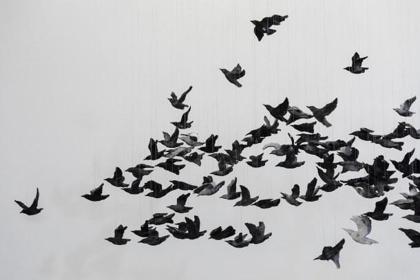 zwerm-porseleinen-vogels-2