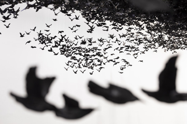 zwerm-porseleinen-vogels-3