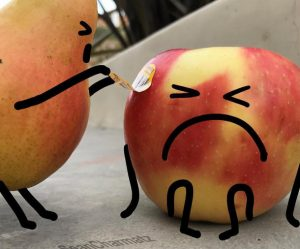 lijnen-fruit