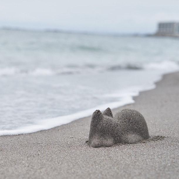 zandkatten-strand-2