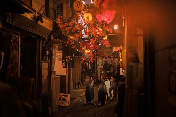 cyberpunk-scenes-zwervende-dieren-2