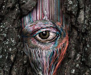 borduren-littekens-bomen