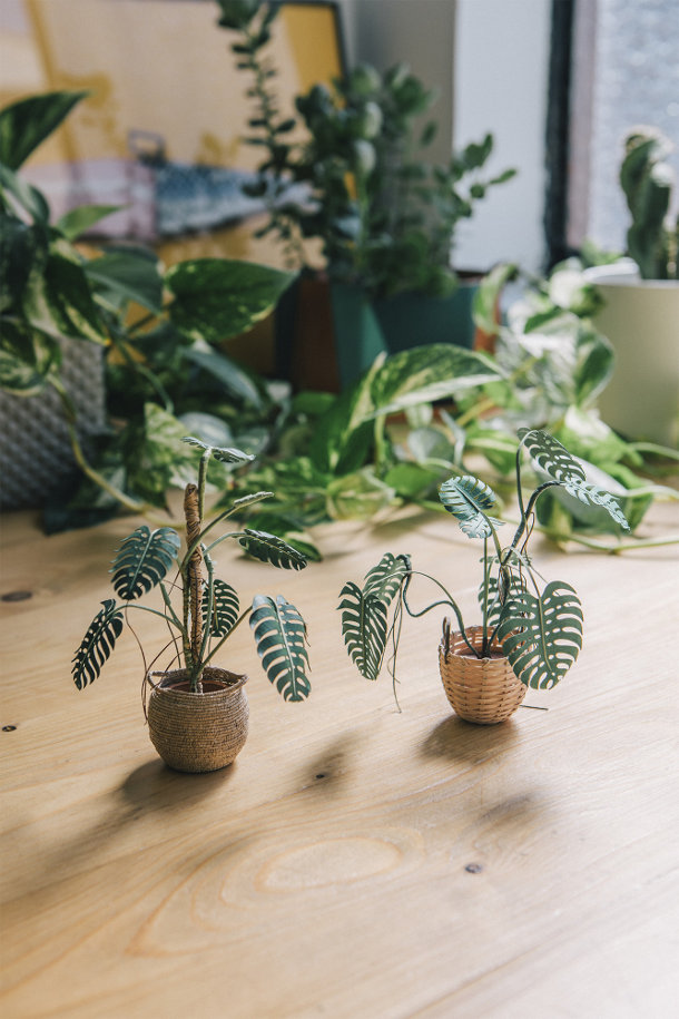 minuscule-papieren-planten-2