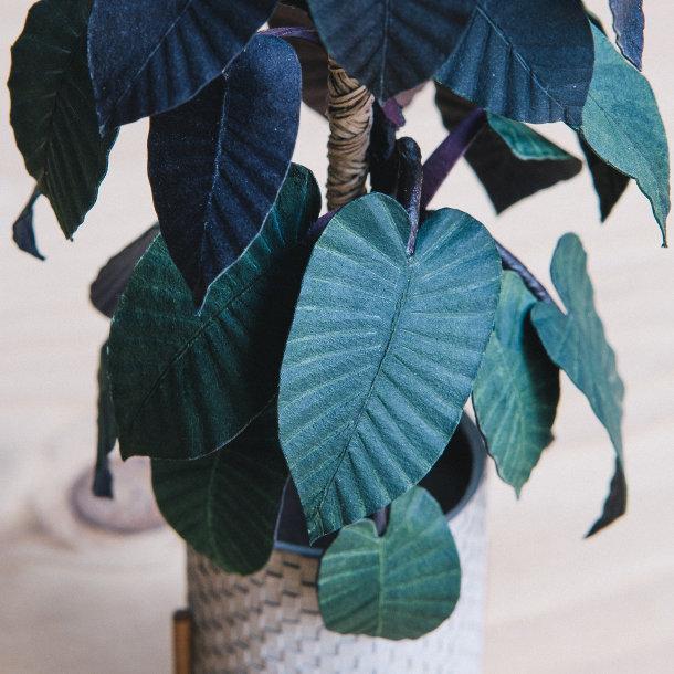 minuscule-papieren-planten-4