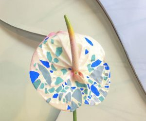schilderachtige-bloemen