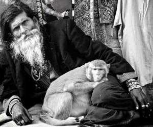 Fotoserie uit India