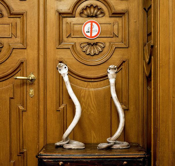 Dierenskeletten van Klaus Pichler