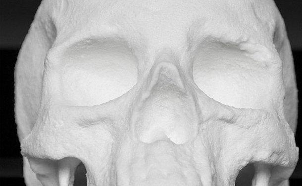 mens-schedel-beeld-2