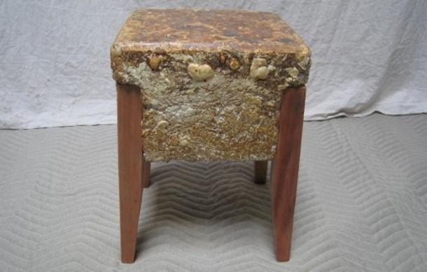stoelen-paddenstoelen-schimmels-2
